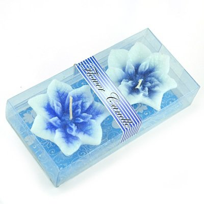 Elegent Sky Blue Twin Flower Candle with Gift Pack